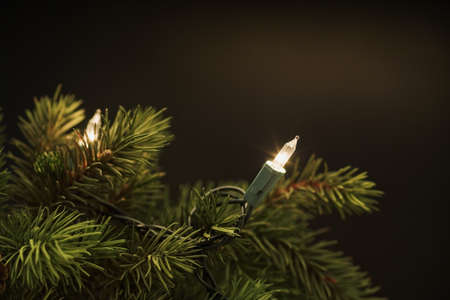 indoors: Christmas tree lights