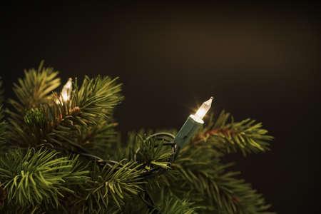 Kerst boom lichten  Stockfoto