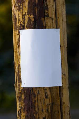 Blank poster on a telephone pole Foto de archivo