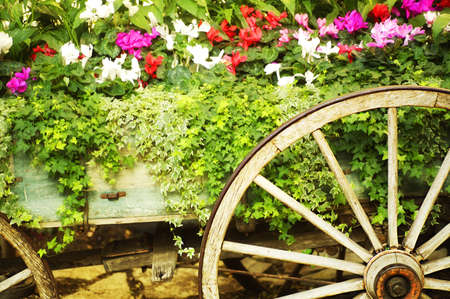 Wooden wagon flower bed Stock Photo - 8243686