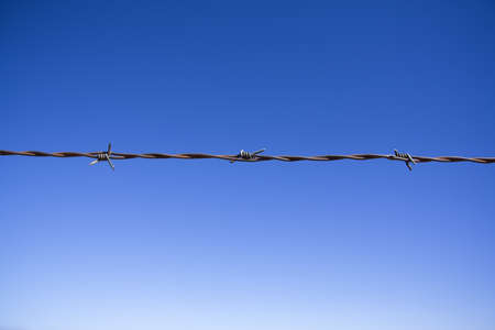 Barbed wire fence Stock Photo - 8241574