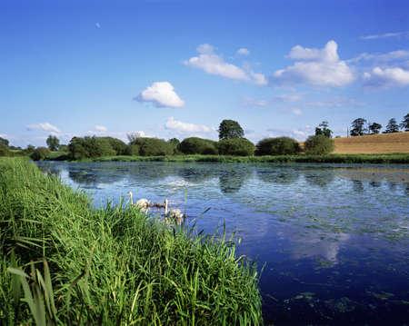 Broadwater, Moira, Co. Down, Ireland photo