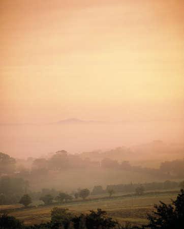 Misty Pastoral Scene, Co Wexford, Ireland Stock Photo - 8241799
