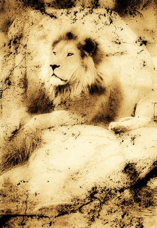 Fotografía antigua de un León en una roca Foto de archivo - 8243577