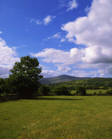 leinster: Co Carlow, Mount Leinster, (from Borris Area), Ireland