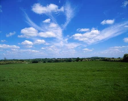 pastoral: Pastoral, Co Kildare, Ireland