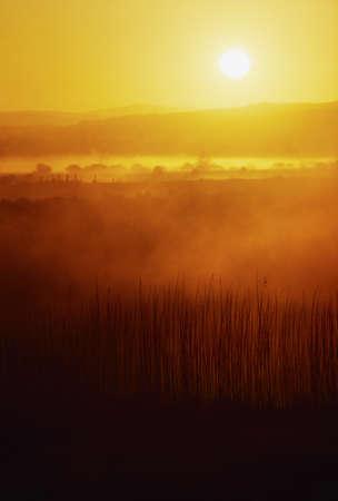 Sunrise, near Bunratty Castle, Co Clare, Ireland Stock Photo