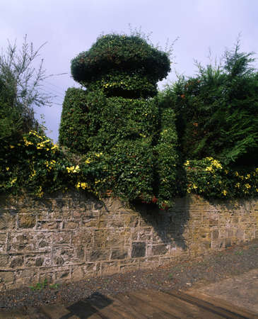 Co Down, Scarva, 19th C. topiary figure of William III at railway station, Ireland Stock Photo - 8243987