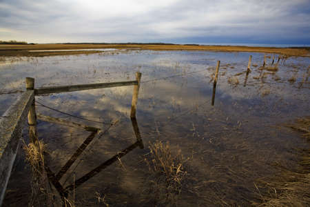 Standing water in a field Stock Photo