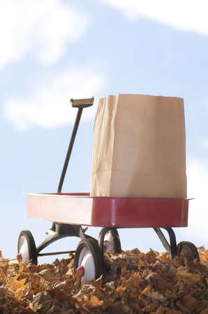 Red wagon carrying a brown paper bag photo