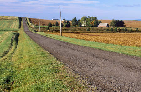 Rural road along farms in Hampton, Prince Edward Island, Canada