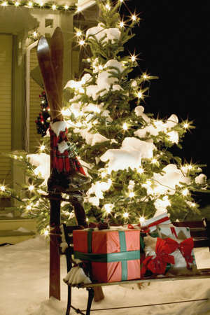 Christmas gifts and skis Stock Photo - 8242142