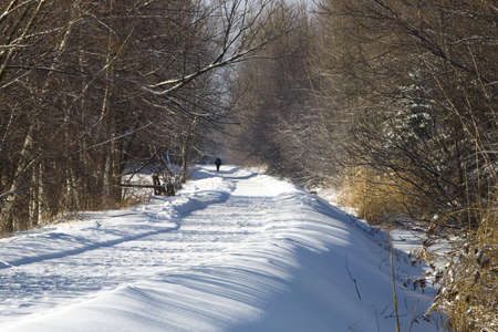 road in winter: Viabilit� invernale