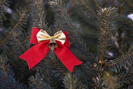 Bow on an evergreen tree Stock Photo - 8242717