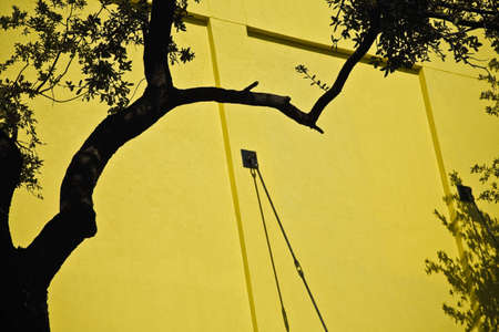 fullframes: A yellow wall and trees