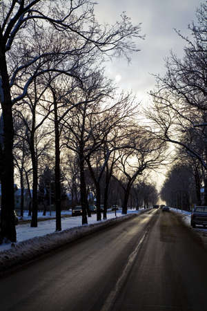 tanasiuk: A city road in winter