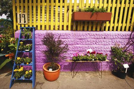 glubish: Garden patio
