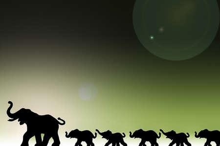 Olifanten in een rij