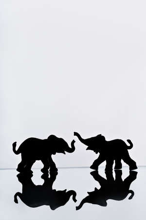 knorr: Elephant pair reflection