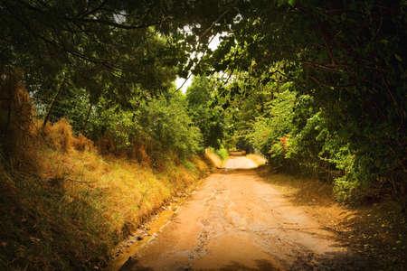 glubish: A dirt road Stock Photo