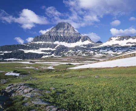 Alpine meadow leading to Reynolds Mountain