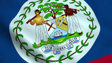 Realistic Belize flag