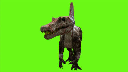 Dinosaur on green screen.