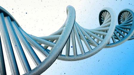 model of DNA strands.