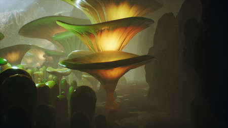 Fantasy mushrooms in a magic forest. Beautiful magic mushrooms in the lost forest and fireflies on the background with the fog. 免版税图像