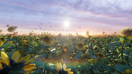 Beautiful Sunflowers in the field at sunrise. Field with sunflowers, butterflies and insects. 3D Rendering
