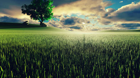 Mystical and fascinating  of morning green grass, tree on the background, morning sun and clouds flying by. 3D Rendering Фото со стока - 126583322