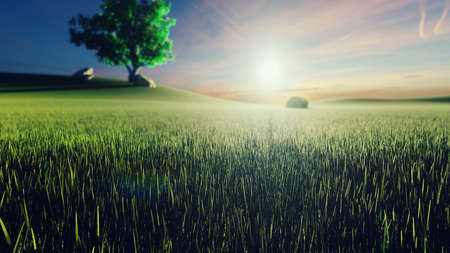 Mystical and fascinating  of morning green grass, tree on the background, morning sun and clouds flying by. 3D Rendering