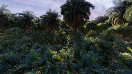Beautiful nature, palm trees, insects, butterflies and birds, green grass and shining sunrise. 3D Rendering Фото со стока