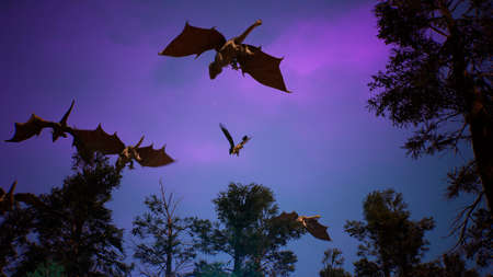 Amazing magical creatures fly over a mysterious night forest. Looping  for fantasy, fiction or fabulous backgrounds. 3D Rendering.