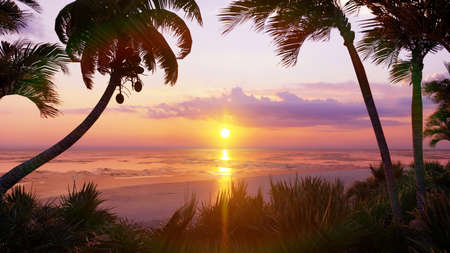 Amazing beautiful sunset over the endless ocean. Blue sky, yellow sun, palm trees, endless ocean and seascape. Summer, beautiful sunset on the sea coasts. 3D Rendering Stok Fotoğraf