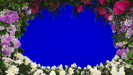 Branches of beautiful tropical plants in the wind. Beautiful summer in front of blue screen background. 3D Rendering.