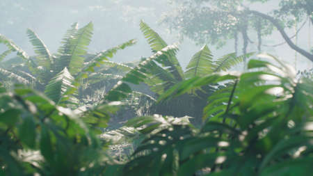 Beautiful jungle and green ferns in the rainforest. View of the green forest in the jungle on a sunny morning. 3D Rendering.