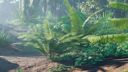 Beautiful jungle and green ferns in the rainforest. View of the green forest in the jungle on a sunny morning. 3D Rendering. Standard-Bild
