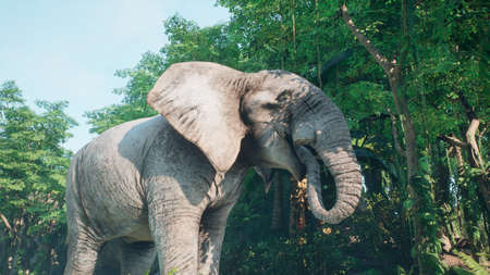 Large gray African elephant in the jungle eats foliage from trees. A look at the African jungle. 3D Rendering.