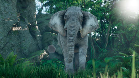 A gray African elephant walks through the green jungle in the early morning. A look at the African jungle. 3D Rendering. Stock Photo