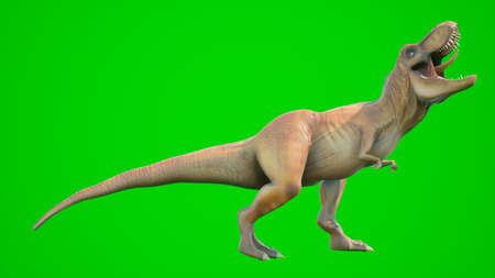 Angry T-Rex dinosaur runs in a looping seamless animation. Reptile in front of green screen. 3D Rendering. Stock Photo