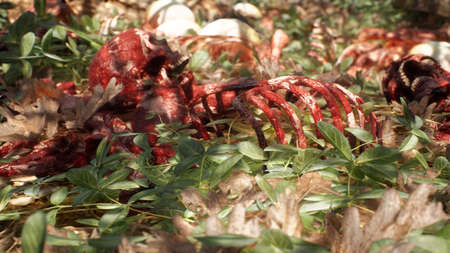 Bloody bones and skulls lie on the battlefield in the middle of the forest. War and apocalypse concept. 3D Rendering.