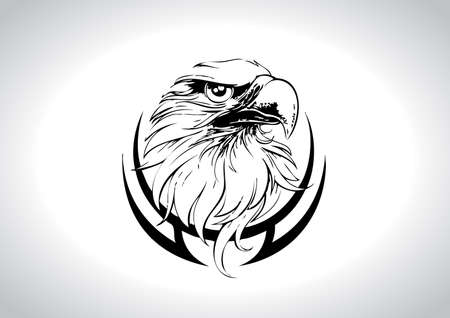 powerfully: Eagle Head Line Art Vector Illustration  Illustration