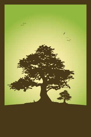 bonsai: Nature scene  Illustration