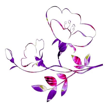 Kleurrijke schets van rozen op wit Stockfoto