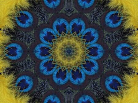 Feathers in a kaleidoscope design