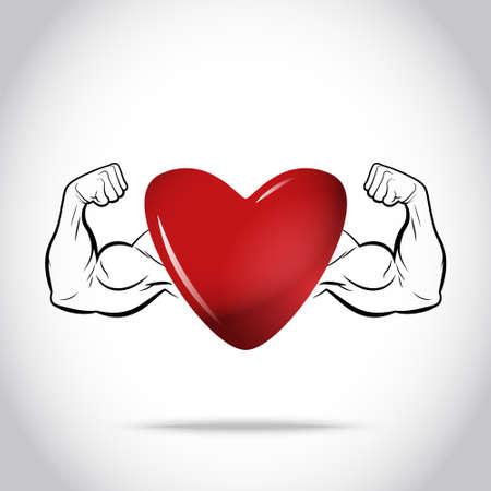 Corazón sano y fuerte Foto de archivo - 33924762