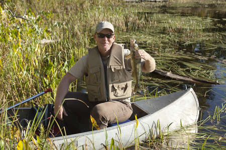 A happy fisherman poses in his canoe with one of several walleyes caught on a fishing expedition in Minnesota Stock Photo