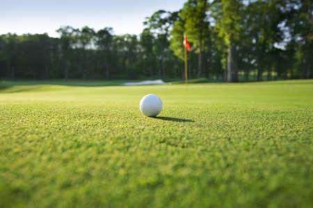 緑の選択と集中にゴルフ ・ ボールのクローズ アップ