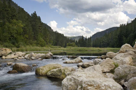 Trout stream and pond in Spearfish Canyon, Black Hills of South Dakota 免版税图像